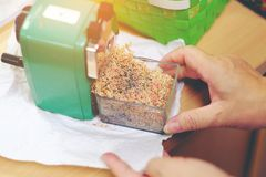 妇女手举行绿色磨削器清洁小块铅笔 免版税库存照片