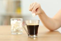 妇女手投掷的糖立方体到咖啡杯里 图库摄影