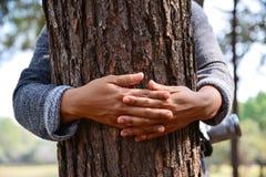 妇女手拥抱树 库存图片