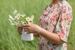 妇女手拿着新鲜的野生雏菊花束在花瓶的 免版税库存图片