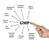 妇女手GMP (好的制造业实践文字组分  库存图片