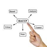 妇女手HACCP概念(危险分析的文字意思  免版税库存图片