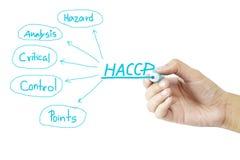 妇女手HACCP概念(重要控制点危险分析的文字意思)在白色背景 免版税库存图片
