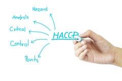 妇女手HACCP概念(重要控制点危险分析的文字意思)在绿色背景 免版税库存图片