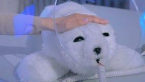 妇女抚摸逗人喜爱的日本机器人封印在机器人展示 影视素材