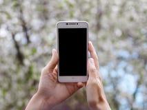妇女拿着一个智能手机并且做照片 打电话在进展的春天树背景,软的焦点,关闭  免版税库存图片