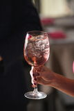 妇女拿着与一朵玫瑰的松弛酒精桃红色鸡尾酒在上面 免版税库存图片