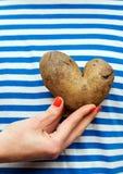 妇女拿着土豆的` s手 免版税库存图片