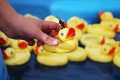 妇女捉住从漂浮在蓝色水池的许多黄色橡胶鸭子的鸭子使用钓鱼竿 免版税库存照片