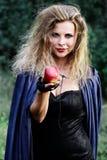 妇女提供她的手用苹果 库存照片