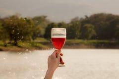 妇女敬酒用红葡萄酒的` s手 库存图片
