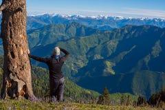 妇女旅客站立,倾斜反对一棵巨大的树 免版税库存图片