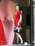 妇女时装模特 库存照片