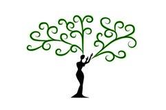 妇女树用手 库存照片