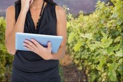 妇女模型拿着一台片剂计算机反对葡萄园背景 库存照片