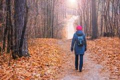 妇女沿一条道路在秋天走在一个公园在一个森林里 免版税库存图片