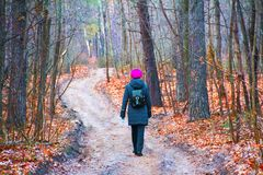 妇女沿一条道路在秋天走在一个公园在一个森林里 免版税图库摄影
