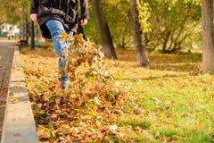 妇女沿下落的秋叶走 免版税图库摄影