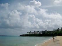 妇女沿单独一个加勒比海滩走 免版税库存图片