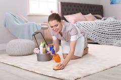 妇女清洁地毯 库存照片