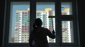 妇女清洁窗口的剪影在家 股票录像