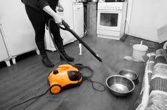 妇女清洁家 免版税库存图片