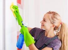妇女清洁碗柜 库存图片