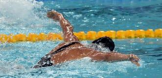 妇女游泳蝴蝶 免版税库存图片