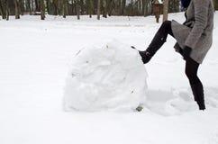妇女灰色外套行程推进雪卷冬天草甸 库存照片