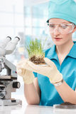 妇女生物学家与显微镜一起使用 免版税库存图片