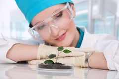 妇女生物学家 免版税库存照片