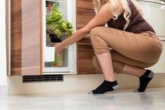 妇女用沙拉,装载在肉贮藏处或冰箱 免版税库存图片