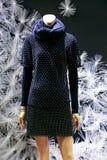 妇女的在时装模特的冬天礼服 库存照片