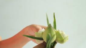 妇女的手折叠的莲花 股票录像
