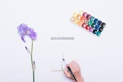 妇女的手画在一个笔记本的一朵花有水彩的 库存照片