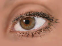 妇女的接近的眼睛重点s 库存图片