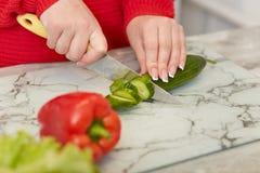 妇女的播种的图象有修指甲裁减的新鲜的黄瓜,胡椒,在红色衣裳在家做素食沙拉,穿戴,立场 库存图片