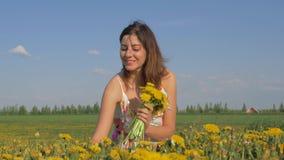 妇女的画象收集黄色在领域的花蒲公英花束  股票视频