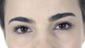 妇女的眨眼睛眼睛 库存图片