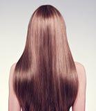 妇女的背面图有长的头发的 免版税库存照片