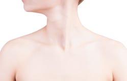 妇女的脖子和肩膀 免版税库存照片