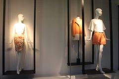 妇女的衣物 免版税库存图片