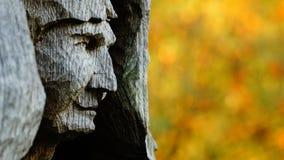 妇女的雕象在树干在背景中雕刻了反对秋天颜色 免版税库存图片