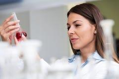 妇女科学家执行的实验在研究实验室 免版税库存图片