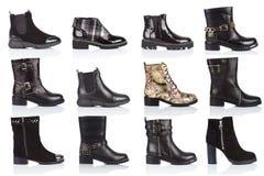 妇女穿上鞋子在白色背景的汇集,与光滑的表面上的一个阴影 正面图 12个片断 库存照片