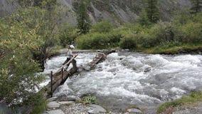 妇女穿过在一个木桥的一条山溪的,阿尔泰山,俄罗斯 股票视频
