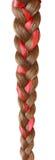 妇女编辫子用在白色隔绝的一条红色丝带装饰 库存照片