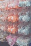 妇女胸罩特写镜头 许多在魅力精品店的另外性感的胸罩女用贴身内衣裤 热带巴厘岛,印度尼西亚 库存图片