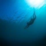 妇女自由潜水 免版税库存照片