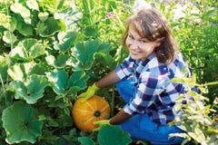 妇女花匠用橙色南瓜在庭院里 免版税图库摄影